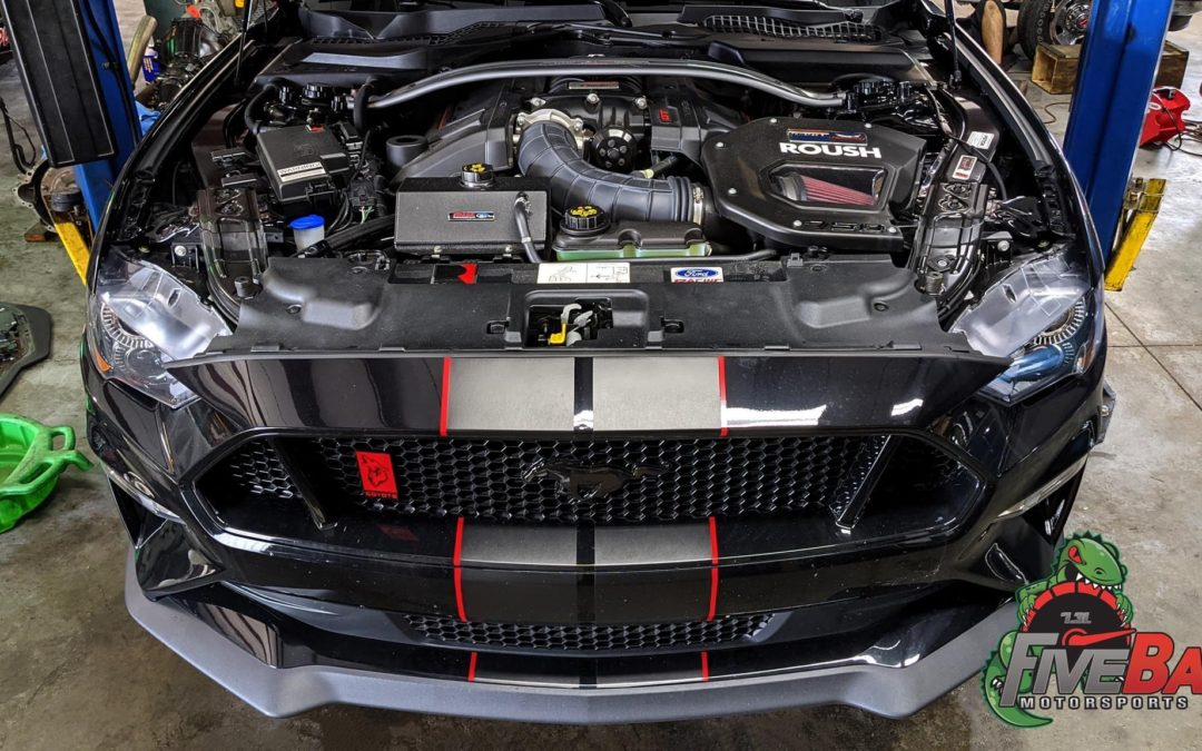 Ford S550 Mustang Interchiller